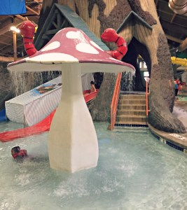 Splashtastic fun at Timber Ridge Lodge in Lake Geneva, Wisconsin.