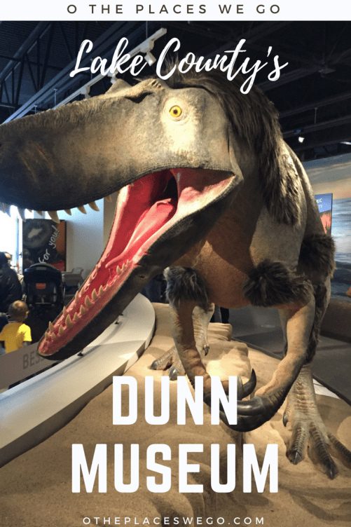The Betty Bower Dunn Museum located in Lake County, Illinois features dinosaurs, wigwams, Native American relics, and more.