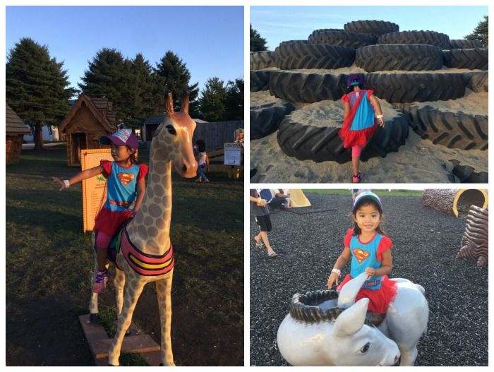 Family Fun at Goebbert's Fall Festival and Fall Lights Show in Hampshire