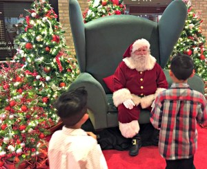 Head to Water Tower Place to see Santa and ride in a virtual sleigh ride.
