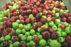 Consumer Choice: As American as Apple Pie