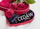 cedaw-valentine-women's-equality