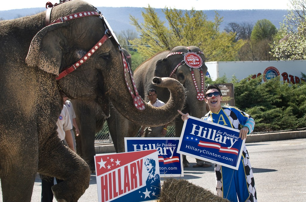 The Elephant in the Race