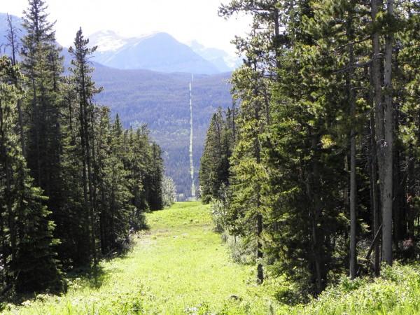 canada-us-border