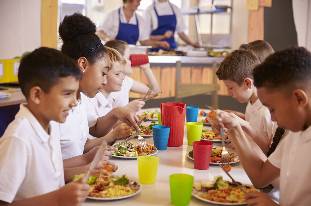 Why Do We Have School Lunch Debt at All?