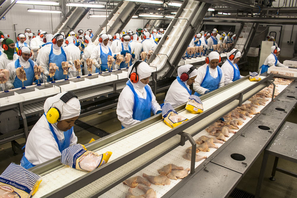 Trump's USDA Is Serving Up Diseased Chicken