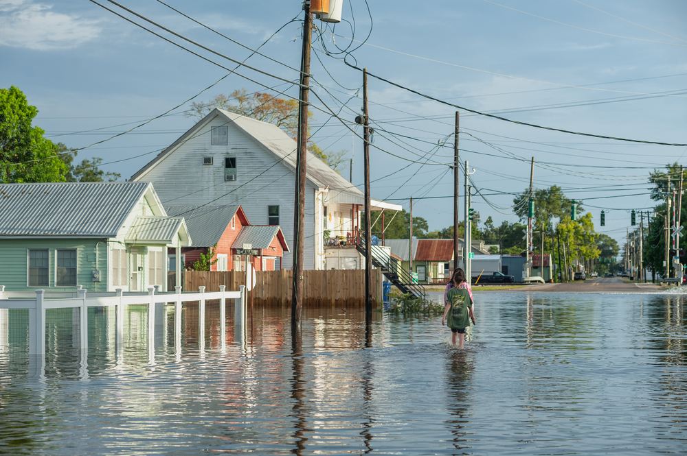 We Need More Than Disaster Recovery — We Need Green Jobs
