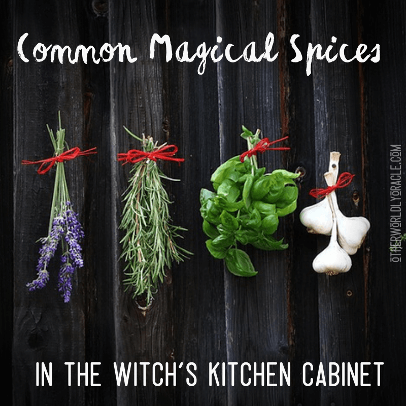 Kitchen Witch: Common Magical Spices in Your Kitchen Cabinet