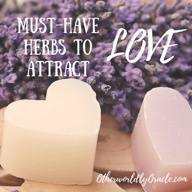 Magical Herbs to attract love - the ultimate list for love magic is here!!!