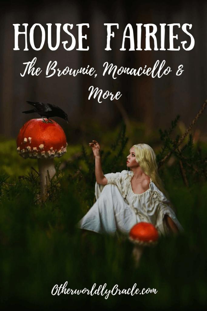 House Fairies and House Elves: the Brownie, Monaciello, Clurichaun and more!