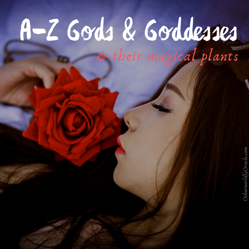 A-Z Gods and Goddesses and Plant Associations: A Reference Guide