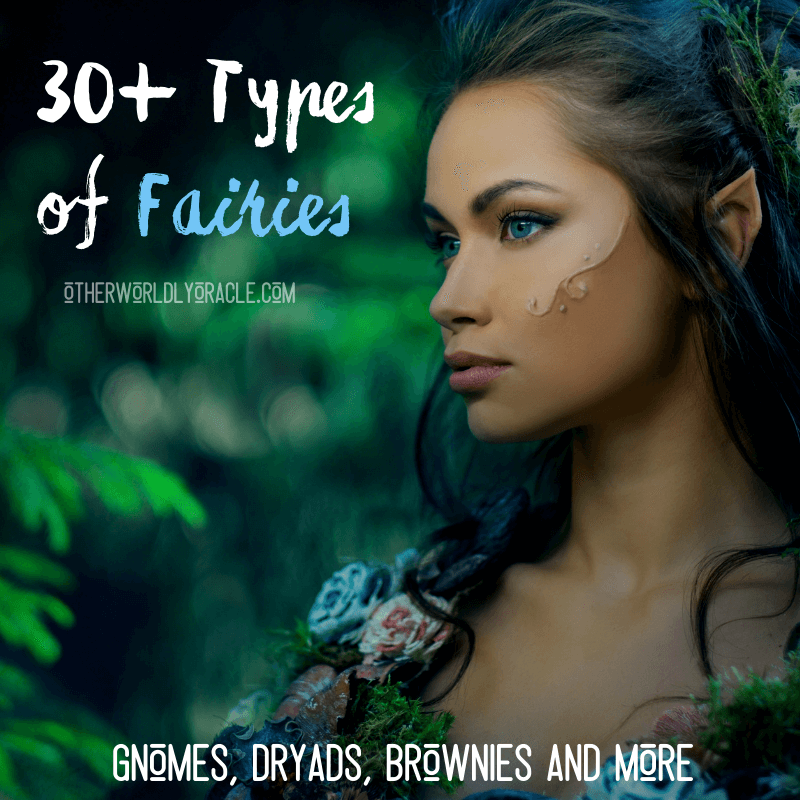 30+ Types of Fairies Worldwide: Gnomes, Vile, Rusalki, Pixies and More