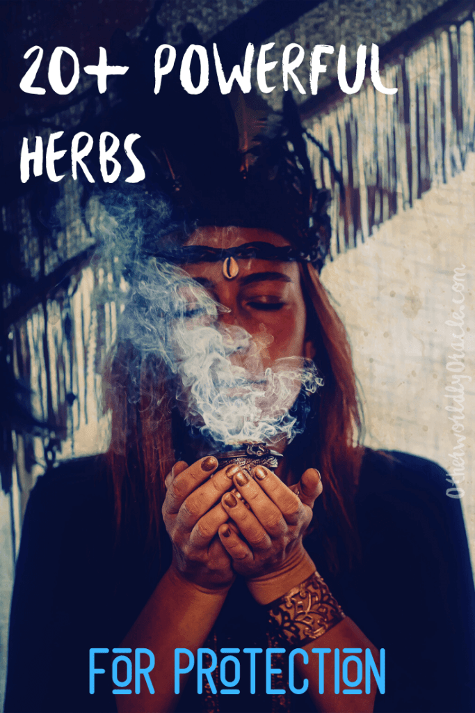 20+ Herbs for Protection: Rue, Rose, Rosemary, and Thorns