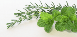 Rosemary-mint-roll-on