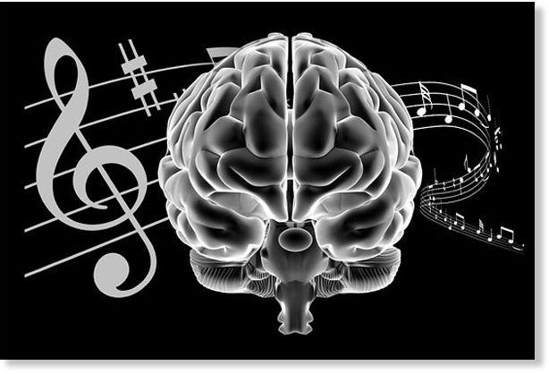 cerebro_musico