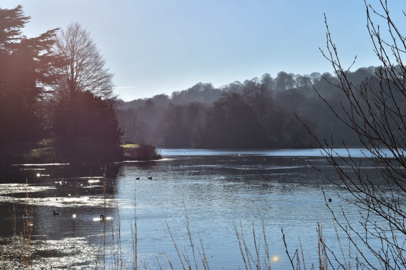 A Family Day Out – Trentham Gardens Staffordshire