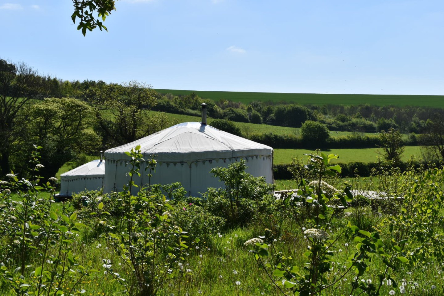 Glamping with kids at Green Valley Yurts, Dorset
