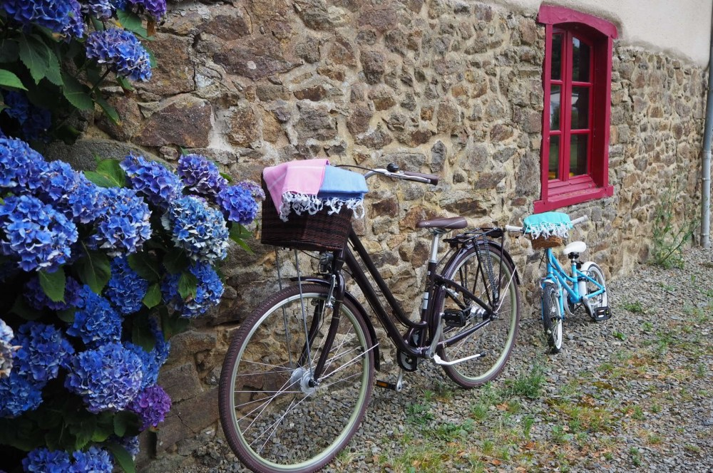 cycling in Domaine du Logis