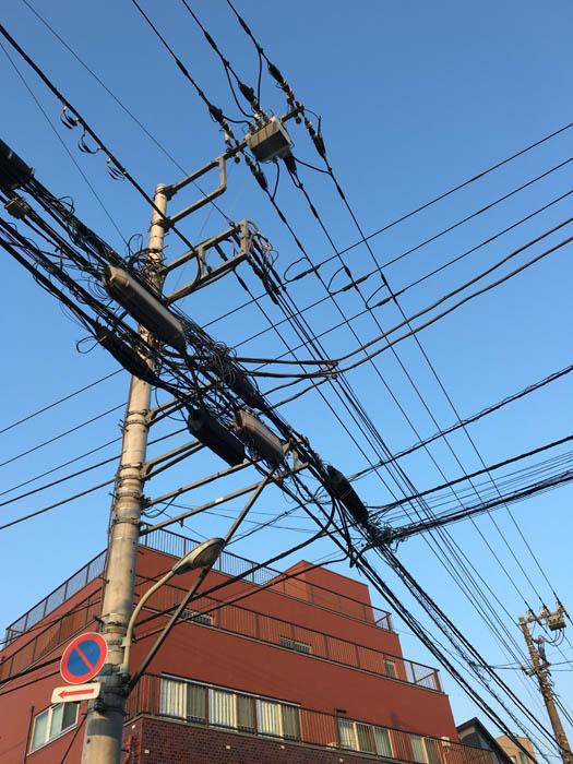 撮影地:東京都板橋区