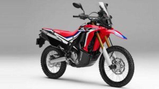Kelebihan dan Kekurangan Motor Touring Honda CRF 250 Rally
