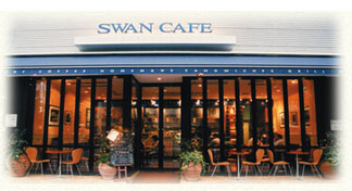 swan-dt