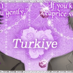 Walkthrough – The Cinderella Contract – Turkiye