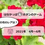 はなかっぱ2021年春アイキャッチ