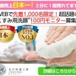 二十年ほいっぷ 100円モニター