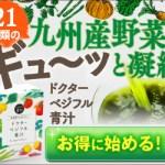 ドクターベジフル青汁 野菜屋さんが本気で作った青汁!