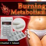 バーニングメタボリズム まるで内臓活性カプセルと話題の納豆菌ダイエット