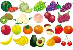 酵素たっぷりのフルーツたち