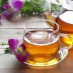 キャンデト茶で目指すは腸内フローラを意識したデットックス!