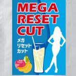 メガリセットカットを公式サイト「ガールズラボ」で購入した方のダイエット体験談を公開!