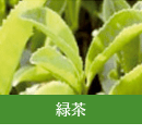 ハーブの成分緑茶