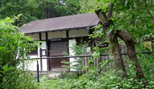 ウォーキングコース 八王子 長池公園 (6月)