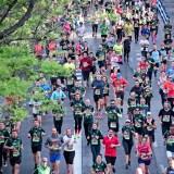 ハーフマラソンに挑戦 ランニングはベンチプレスに影響する?