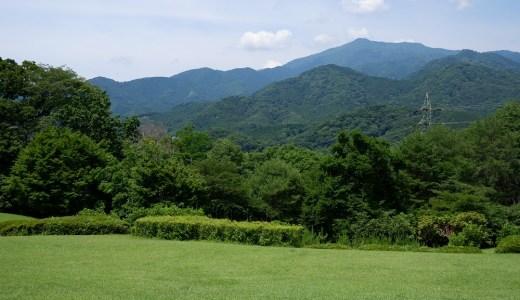 ウォーキングコース お気に入りスポットが幾つもできる!? 県立七沢森林公園