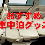 【車中泊グッズ】車中泊マニアがおすすめする快適グッズまとめ!