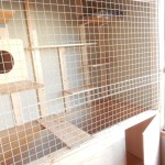 猫の小屋を手作りしたらほぼ動物園な件