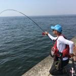 黒鯛ヘチ釣りリールのおすすめ3選【回転性能最強】