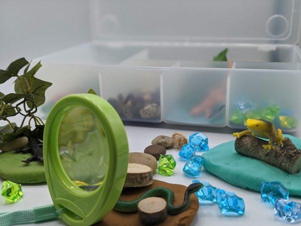 Reptiles Kit - Magnifying Glass