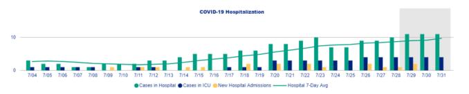 July Hospitalizations in Ottawa