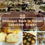 20 Delicious Back to School Lunchbox Snacks