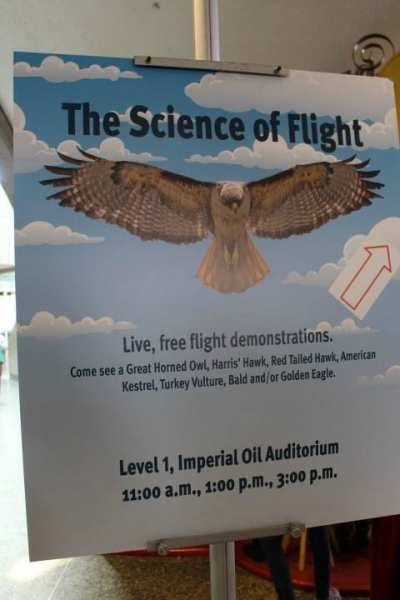 Science of Flight- Ontario Science Centre