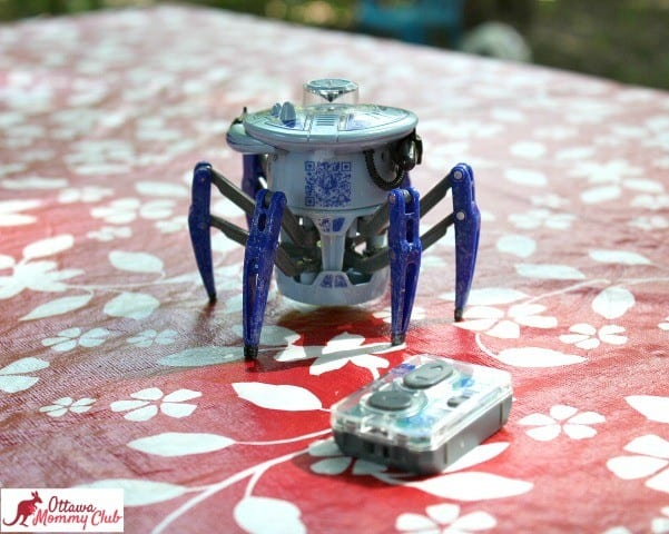 Ottawa Mommy Club HEXBUG Spider Photo