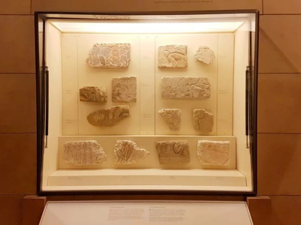 Delight in Different Adventures at the Royal Ontario Museum #Review