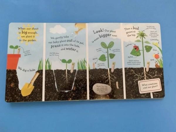 I Can Grow a Flower inside book