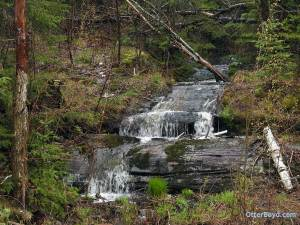 spring waterfall in forest