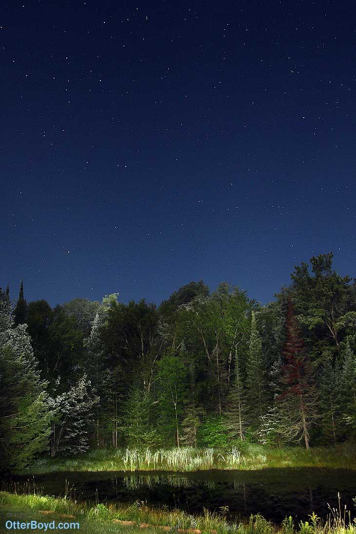 Stars in Night Sky Over Pond