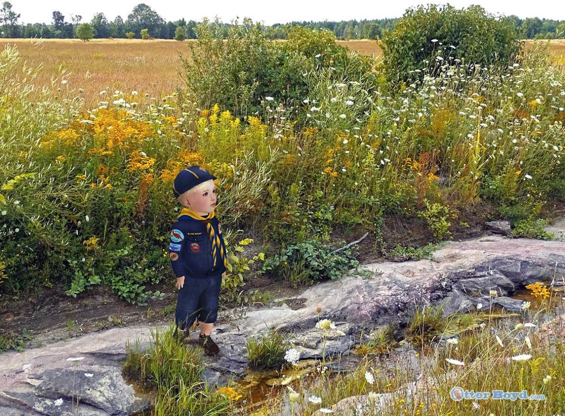 Otter the Boyd Scout on hike in his version of Boy Scouts Cub Scout uniform